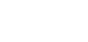 Partner - Wordpress